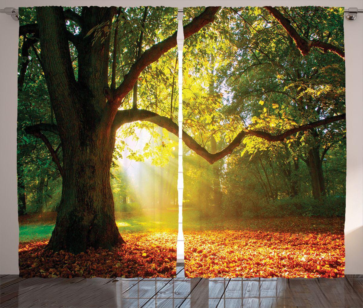 Комплект фотоштор Magic Lady Старое дерево в солнечном свете, на ленте, высота 265 см. шсг_16589шсг_16589Компания Сэмболь изготавливает шторы из высококачественного сатена (полиэстер 100%). При изготовлении используются специальные гипоаллергенные чернила для прямой печати по ткани, безопасные для человека и животных. Экологичность продукции Magic lady и безопасность для окружающей среды подтверждены сертификатом Oeko-Tex Standard 100. Крепление: крючки для крепления на шторной ленте (50 шт). Возможно крепление на трубу. Внимание! При нанесении сублимационной печати на ткань технологическим методом при температуре 240°С, возможно отклонение полученных размеров (указанных на этикетке и сайте) от стандартных на + - 3-5 см. Производитель старается максимально точно передать цвета изделия на фотографиях, однако искажения неизбежны и фактический цвет изделия может отличаться от воспринимаемого по фото. Обратите внимание! Шторы изготовлены из полиэстра сатенового переплетения, а не из сатина (хлопок). Размер одного полотна шторы: 145х265 см. В комплекте 2...