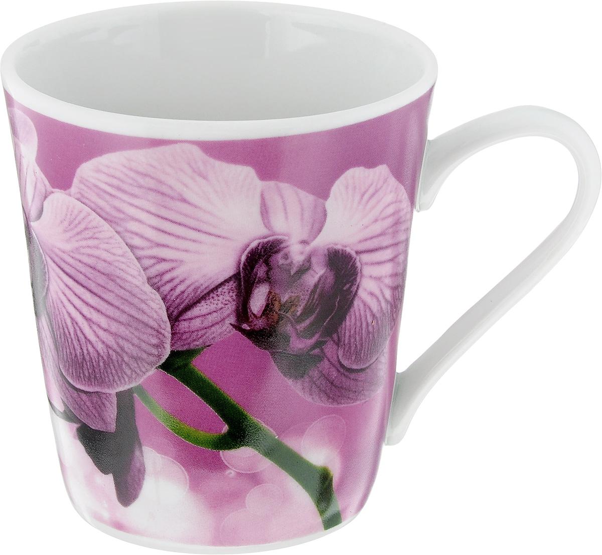 Кружка Классик. Орхидея, цвет: сиреневый, зеленый, белый, 300 мл1333019_розовый, белыйКружка Классик. Орхидея изготовлена из высококачественного фарфора. Изделие оформлено красочным рисунком и покрыто превосходной сверкающей глазурью. Изысканная кружка прекрасно оформит стол к чаепитию и станет его неизменным атрибутом. Диаметр кружки (по верхнему краю): 9 см. Высота кружки: 9,5 см.