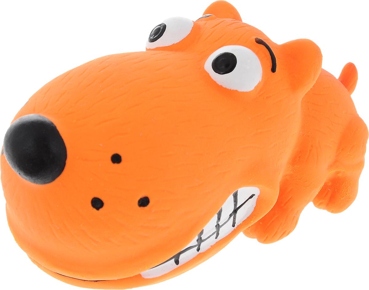 Игрушка для собак Dezzie Забавный пес, с пищалкой, длина 8 см5620075Очаровательная игрушка Dezzie Забавный пес обеспечит веселый досуг вашей собаке. Она безопасна для здоровья животного. Латекс не твердеет под действием желудочного сока, поэтому игрушку можно смело покупать даже самым маленьким щенкам. В мяч встроена пищалка. С такой игрушкой ваш питомец точно не будет скучать. Длина игрушки: 8 см.