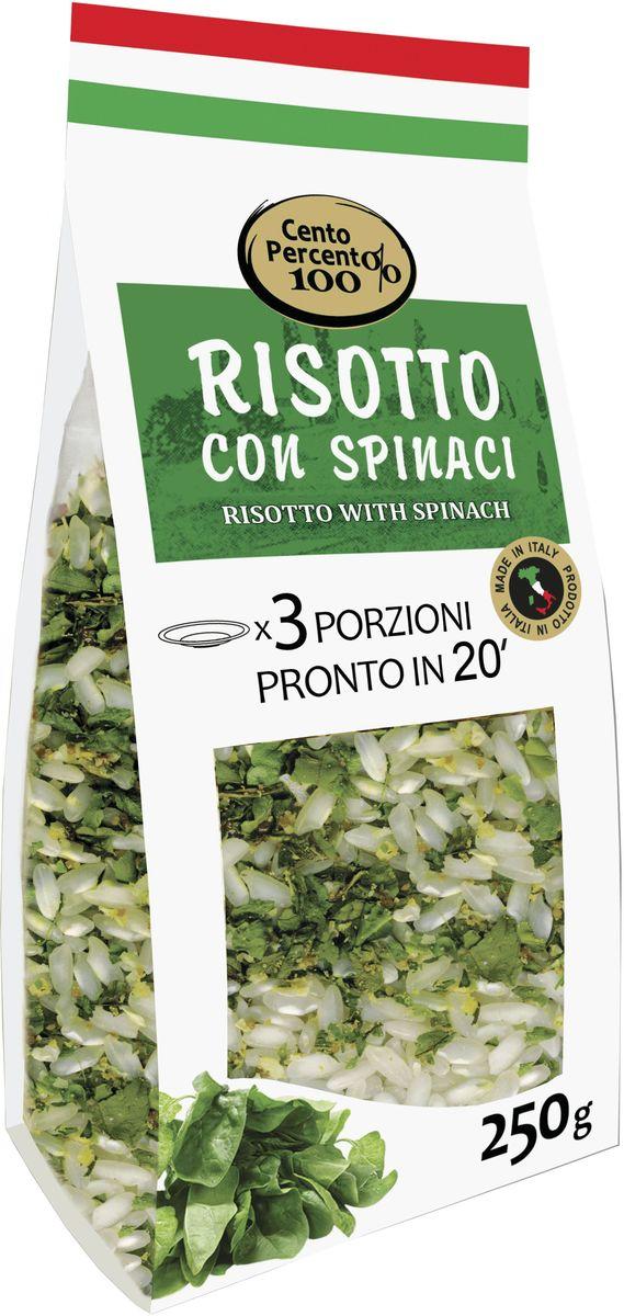 Cento Percento ризотто со шпинатом, 250 г18501Приготовить настоящее итальянское ризотто теперь легко! В этом вам поможет ризотто Cento Percento. Ризотто Cento Percento - это продукт, полностью произведенный в Италии. Ризотто со шпинатом - это среднезерный итальянский рис Карнароли, шпинат, а также специи и приправы. 20 минут - и 3 порции настоящего итальянского ризотто готовы!