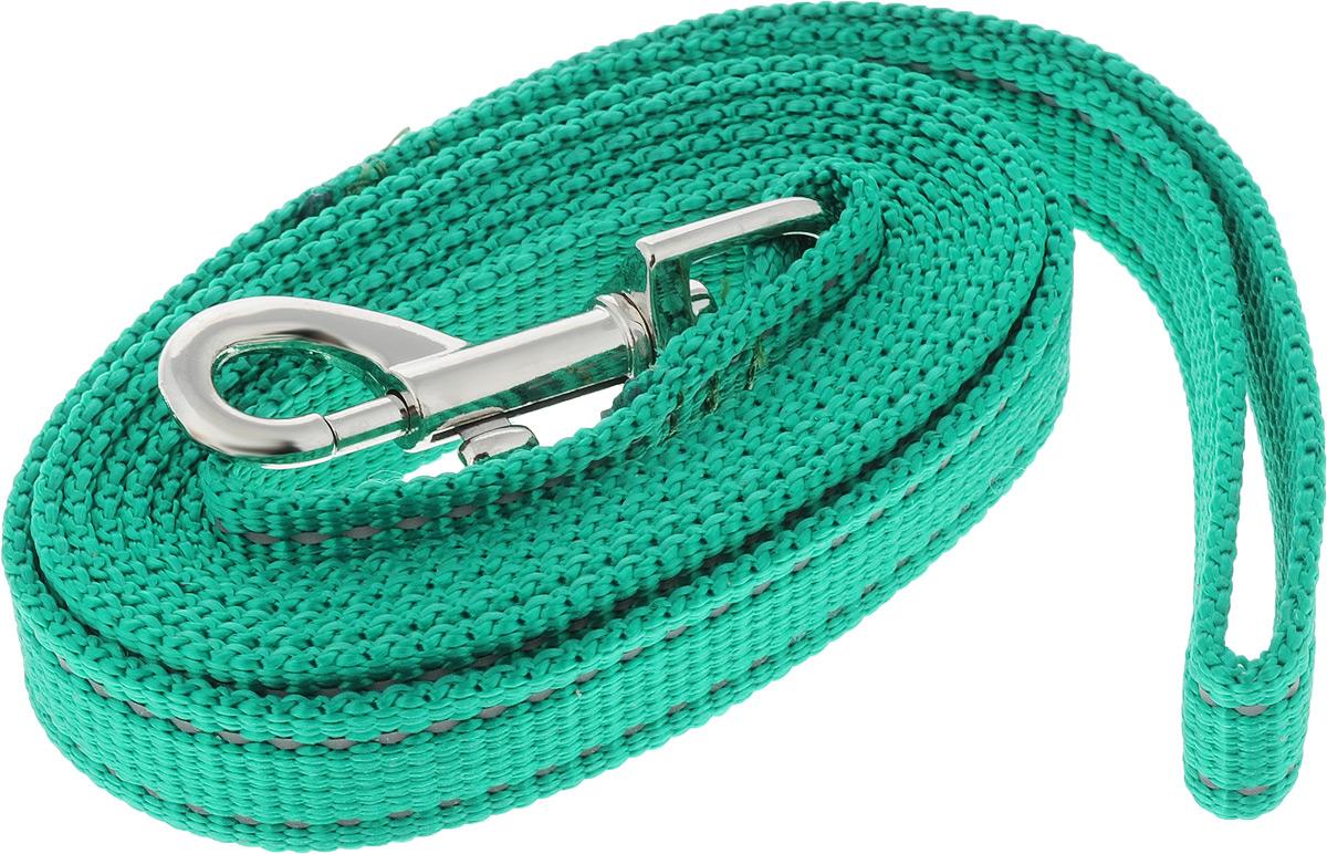 Поводок капроновый для собак Аркон, цвет: зеленый, ширина 2 см, длина 2 мпк2м20_зеленыйПоводок для собак Аркон изготовлен из высококачественного цветного капрона и снабжен металлическим карабином. Изделие отличается не только исключительной надежностью и удобством, но и привлекательным современным дизайном. Поводок - необходимый аксессуар для собаки. Ведь в опасных ситуациях именно он способен спасти жизнь вашему любимому питомцу. Иногда нужно ограничивать свободу своего четвероногого друга, чтобы защитить его или себя от неприятностей на прогулке. Длина поводка: 2 м. Ширина поводка: 2 см.