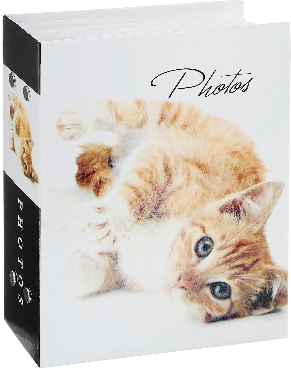 Фотоальбом Platinum Кошки - 2. Рыжий котенок, 100 фотографий, 10 х 15 см11828_рыжий котенокФотоальбом Platinum Кошки-2. Рыжий котенок поможет красиво оформить ваши фотографии. Обложка выполнена из толстого картона. Внутри содержится блок из 50 листов с фиксаторами-окошками из полипропилена. Альбом рассчитан на 100 фотографий формата 10 х 15 см. Переплет - книжный. Нам всегда так приятно вспоминать о самых счастливых моментах жизни, запечатленных на фотографиях. Поэтому фотоальбом является универсальным подарком к любому празднику. Количество листов: 50.