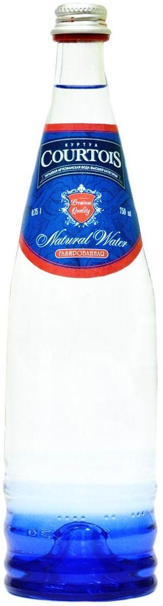 """""""Courtois"""" питьевая артезианская вода высшей категории газированная, 0,75 л 010500-0020588"""