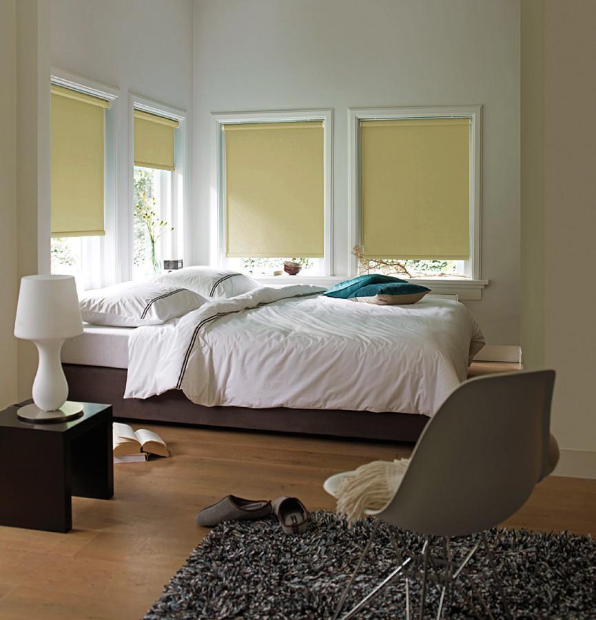 Штора рулонная Эскар Blackout, светонепроницаемая, цвет: ванильный, ширина 160 см, высота 170 см84021160170Рулонными шторами можно оформлять окна как самостоятельно, так и использовать в комбинации с портьерами. Это поможет предотвратить выгорание дорогой ткани на солнце и соединит функционал рулонных с красотой навесных. Преимущества применения рулонных штор для пластиковых окон: - имеют прекрасный внешний вид: многообразие и фактурность материала изделия отлично смотрятся в любом интерьере; - многофункциональны: есть возможность подобрать шторы способные эффективно защитить комнату от солнца, при этом она не будет слишком темной. - Есть возможность осуществить быстрый монтаж. ВНИМАНИЕ! Размеры ширины изделия указаны по ширине ткани! Во время эксплуатации не рекомендуется полностью разматывать рулон, чтобы не оторвать ткань от намоточного вала. В случае загрязнения поверхности ткани, чистку шторы проводят одним из способов, в зависимости от типа загрязнения: легкое поверхностное загрязнение можно удалить при помощи канцелярского ластика; чистка от пыли производится сухим методом при...