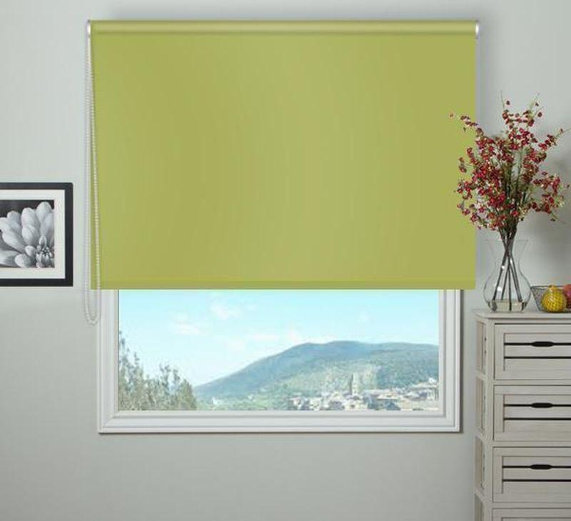 Штора рулонная Эскар Blackout, светонепроницаемая, цвет: оливковый, ширина 160 см, высота 170 см84080160170Рулонными шторами можно оформлять окна как самостоятельно, так и использовать в комбинации с портьерами. Это поможет предотвратить выгорание дорогой ткани на солнце и соединит функционал рулонных с красотой навесных. Преимущества применения рулонных штор для пластиковых окон: - имеют прекрасный внешний вид: многообразие и фактурность материала изделия отлично смотрятся в любом интерьере; - многофункциональны: есть возможность подобрать шторы способные эффективно защитить комнату от солнца, при этом она не будет слишком темной. - Есть возможность осуществить быстрый монтаж. ВНИМАНИЕ! Размеры ширины изделия указаны по ширине ткани! Во время эксплуатации не рекомендуется полностью разматывать рулон, чтобы не оторвать ткань от намоточного вала. В случае загрязнения поверхности ткани, чистку шторы проводят одним из способов, в зависимости от типа загрязнения: легкое поверхностное загрязнение можно удалить при помощи канцелярского ластика; чистка от пыли производится сухим методом при...