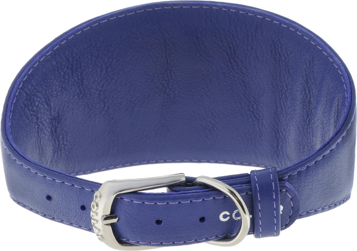 Ошейник для борзых собак CoLLaR Glamour, цвет: фиолетовый, ширина 2 см, обхват шеи 34-40 см34679Ошейник для борзых собак CoLLaR Glamour, выполненный из натуральной кожи, устойчив к влажности и перепадам температур. Крепкие металлические элементы делают ошейник надежным и долговечным. Изделие отличается высоким качеством, удобством и универсальностью. Размер ошейника регулируется при помощи пряжки, зафиксированной на одном из 5 отверстий. Минимальный обхват шеи: 34 см. Максимальный обхват шеи: 40 см. Минимальная ширина: 2 см. Максимальная ширина: 8 см.
