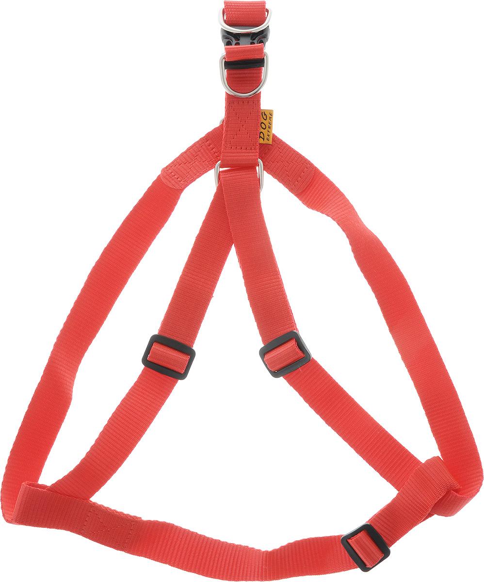 Шлейка Dog Extremе нейлоновая регулируемая, цвет: красный, ширина 25 мм, обхват груди: 60-90 см06683Шлея Dog Extremе нейлоновая регулируемая (ширина 25мм, В:60-90см) красная
