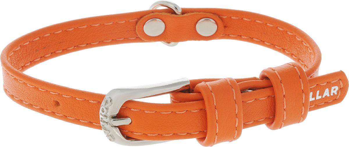 Ошейник для собак CoLLaR Glamour, цвет: оранжевый, ширина 9 мм, обхват шеи 19-25 см. 320132014Ошейник CoLLaR Glamour изготовлен из натуральной кожи, устойчивой к влажности и перепадам температур. Клеевой слой, сверхпрочные нити, крепкие металлические элементы делают ошейник надежным и долговечным. Изделие отличается высоким качеством, удобством и универсальностью. Размер ошейника регулируется при помощи металлической пряжки. Имеется металлическое кольцо для крепления поводка. Ваша собака тоже хочет выглядеть стильно! Такой модный ошейник станет для питомца отличным украшением и выделит его среди остальных животных. Минимальный обхват шеи: 19 см. Максимальный обхват шеи: 25 см. Ширина: 9 мм.