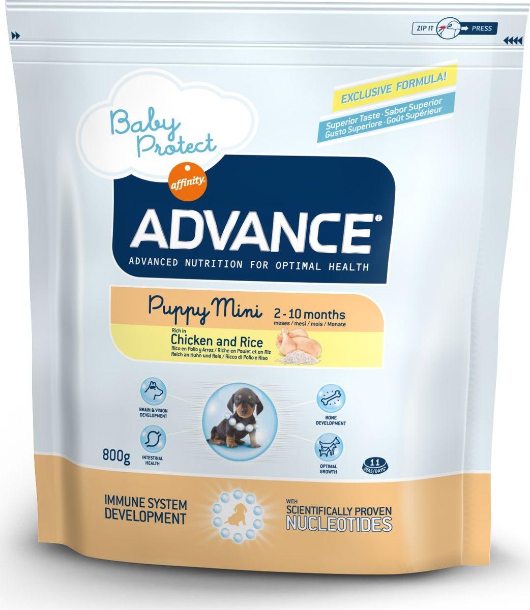 Корму сухой Advance для щенков малых пород с 2 до 10 месяцев Baby Protect Mini, 0,8 кг. 50111013043Advance – высококачественный корм супер-премиум класса Испанской компании Affinity Petcare, которая занимает лидирующие места на Европейском и мировом рынках. Корм разработан с учетом всех особенностей развития и жизнедеятельности собак и кошек. В линейке кормов Advance любой хозяин может подобрать необходимое питание в соответствии с возрастом и уникальными особенностями своего животного, а также в случае назначения специалистами ветеринарной диеты. Курица (20%), рис (17%), дегидрированное мясо курицы, мука из маиса, животный жир, маис, пшеница, гидролизированный белок животного происхождения, свекольный жом, рыбий жир,яичный порошок, дрожжи, плазменный протеин, хлористый калий, соль, трикальцийфосфат, нуклеотиды. Affinity Petcare имеет собственную лабораторию, а также сотрудничает со множеством международных исследовательских центров, благодаря чему специалисты постоянно совершенствуют рецептуру и полезные свойства своих кормов. В составе главным источником белка является СВЕЖЕЕ...