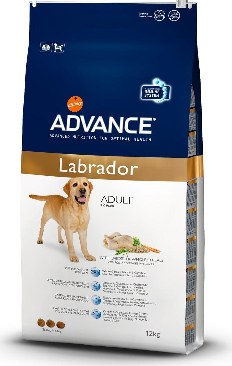 Корму сухой Advance для золотистых ретриверов лабрадоров Labrador Retriever, 12 кг. 53651013073Advance – высококачественный корм супер-премиум класса Испанской компании Affinity Petcare, которая занимает лидирующие места на Европейском и мировом рынках. Корм разработан с учетом всех особенностей развития и жизнедеятельности собак и кошек. В линейке кормов Advance любой хозяин может подобрать необходимое питание в соответствии с возрастом и уникальными особенностями своего животного, а также в случае назначения специалистами ветеринарной диеты. Affinity Petcare имеет собственную лабораторию, а также сотрудничает со множеством международных исследовательских центров, благодаря чему специалисты постоянно совершенствуют рецептуру и полезные свойства своих кормов. В составе главным источником белка является СВЕЖЕЕ мясо, благодаря которому корм обладает высокими вкусовыми качествами, а также высокой питательной ценностью.