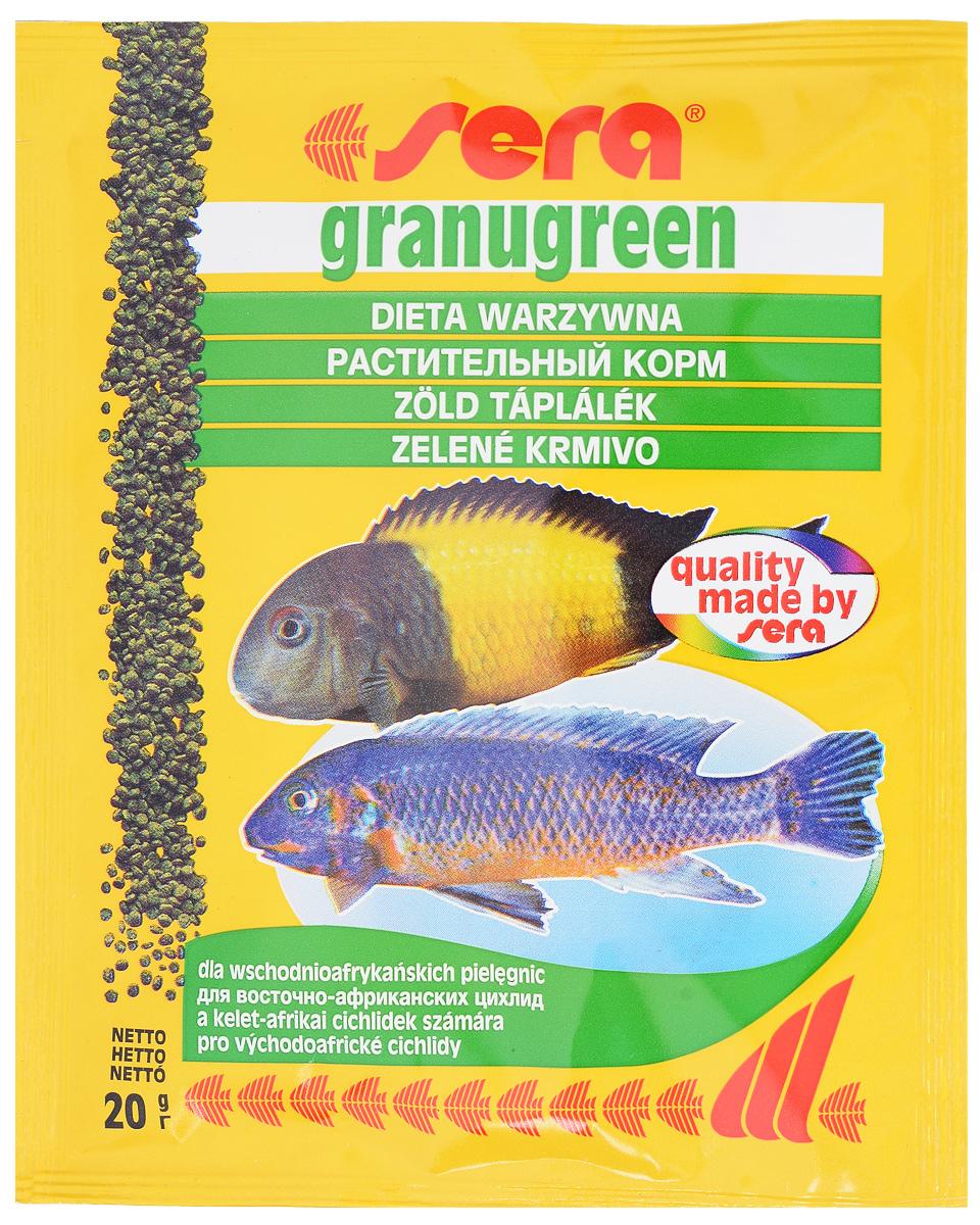 Корм для рыб Sera Granugreen, 20 г0391Sera Granugreen - основной корм, предназначенный для предназначен для цихпид, которые преимущественно питаются растениями и перифитоном. Состоит из гранул, произведенных путем бережной обработки сырья. Сбалансированный состав растительных компонентов, таких как водоросль спирулина и шпинат, способствует здоровому пищеварению и оптимальному формированию яркости и насыщенности окраски цихпид. Медленно тонущие гранулы, надолго сохраняют свою форму в воде, не загрязняя её. Ингредиенты: рыбная мука, кукурузный крахмал, пшеничная клейковина, пшеничная мука, пшеничные зародыши, пивные дрожжи, рыбий жир (в том числе 49% Омега жирных кислот), петрушка, спирулина (1,7%), крапива, растительное сьрье, люцерна, маннанолигосахариды (0,4%), морские водоросли, паприка, шпинат, морковь, зеленые мидии, водоросль гематококкус, чеснок. Аналитический состав: протеин 38,9%, жиры 8,5%, клетчатка 4,8%, влажностъ 5,0%, зольные вещества 5,3%. Содержание...
