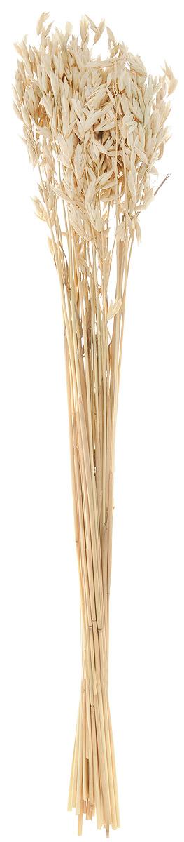 Украшение декоративное Lovemark Пучок овса, цвет: бежевый, длина 70 см6028_бежевыйУкрашение декоративное Lovemark Пучок овса - великолепный подарок себе и вашим близким. Этот очаровательный предмет интерьера будет приковывать взгляды ваших гостей. Изделия из соломы несут в себе энергию солнечных лучей. Несмотря на свой хрупкий вид, солома - прочный и долговечный материал, а значит не помнется и не поломается со временем. Рекомендации по уходу: изделие должно находиться в сухом помещении.