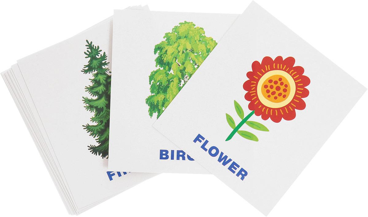 Айрис-пресс Обучающие карточки English Растения