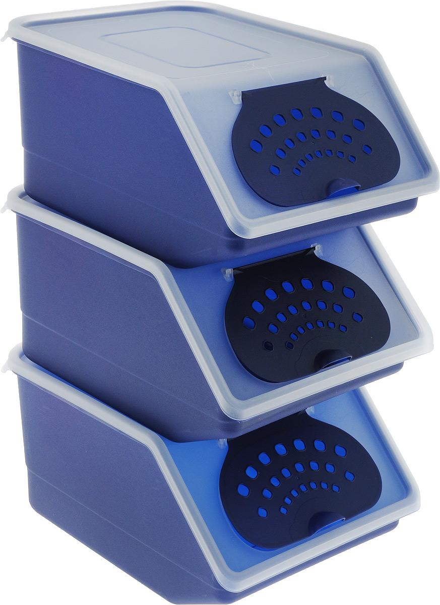 """Набор контейнеров для хранения овощей """"Полимербыт"""", цвет: темно-синий, белый, 3 шт"""