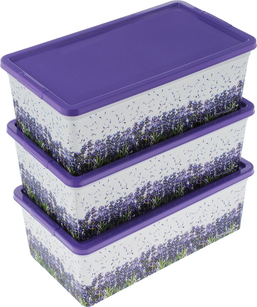 Набор контейнеров для хранения Полимербыт Лаванда, 3 шт. SGHPBKP99SGHPBKP99Комплект из 3х коробок для мелочей Лаванда. Объемом 5,5 л. Многофункциональный, пригодится в быту для любых случаев. Удобные в использовании и хранении.