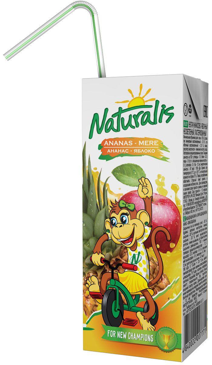 Naturalis нектар яблочно-ананасовый неосветленный, 0,2 л ВГС_152