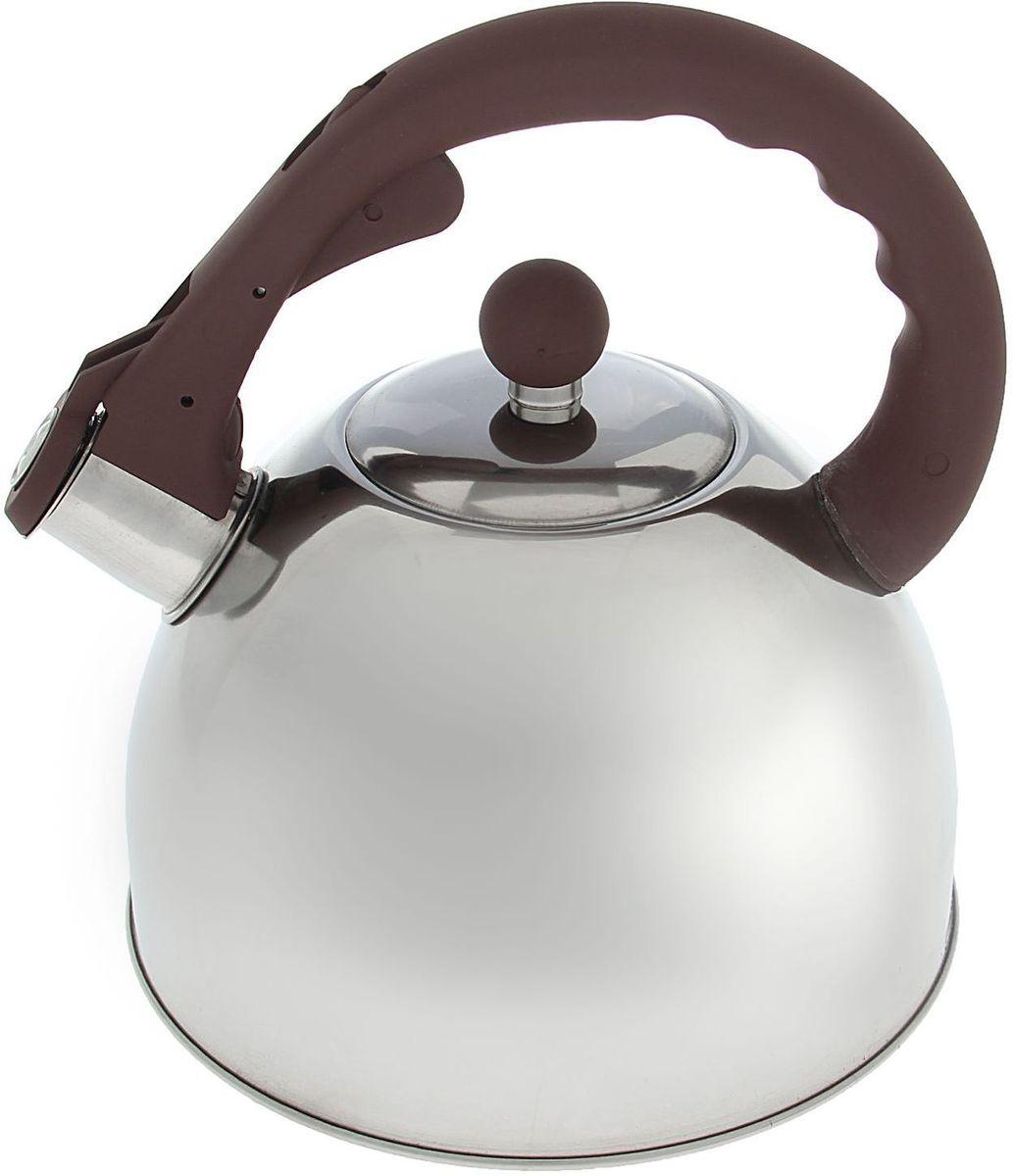 Чайник Доляна Бэйсик, со свистком, цвет: коричневый, 2,5 л1405196Бытовая посуда из нержавеющей стали славится неприхотливостью в уходе и безукоризненной функциональностью. Коррозиестойкий сплав обеспечивает гигиеничность изделий. Чайники из этого материала абсолютно безопасны для здоровья человека. Чем привлекательна посуда из нержавейки? Чайник из нержавеющей стали станет удачной находкой для дома или ресторана: благодаря низкой теплопроводности модели вода дольше остается горячей; необычный дизайн радует глаз и поднимает настроение; качественное дно гарантирует быстрый нагрев. Как продлить срок службы? Ухаживать за новым приобретением элементарно просто, но стоит помнить о нескольких нехитрых правилах. Во-первых, не следует применять абразивные инструменты и сильнохлорированные моющие средства. Во-вторых, не оставляйте пустую посуду на плите. В-третьих, если вы уезжаете из дома на длительное время - выливайте воду из чайника. Если на внутренней поверхности изделия появились пятна, используйте для их удаления несколько капель уксусной или лимонной...