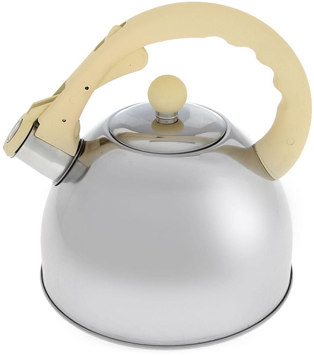 Чайник Доляна Бэйсик, со свистком, цвет: бежевый, 2,5 л1405197Бытовая посуда из нержавеющей стали славится неприхотливостью в уходе и безукоризненной функциональностью. Коррозиестойкий сплав обеспечивает гигиеничность изделий. Чайники из этого материала абсолютно безопасны для здоровья человека. Чем привлекательна посуда из нержавейки? Чайник из нержавеющей стали станет удачной находкой для дома или ресторана: благодаря низкой теплопроводности модели вода дольше остается горячей; необычный дизайн радует глаз и поднимает настроение; качественное дно гарантирует быстрый нагрев. Как продлить срок службы? Ухаживать за новым приобретением элементарно просто, но стоит помнить о нескольких нехитрых правилах. Во-первых, не следует применять абразивные инструменты и сильнохлорированные моющие средства. Во-вторых, не оставляйте пустую посуду на плите. В-третьих, если вы уезжаете из дома на длительное время - выливайте воду из чайника. Если на внутренней поверхности изделия появились пятна, используйте для их удаления несколько капель уксусной или лимонной...