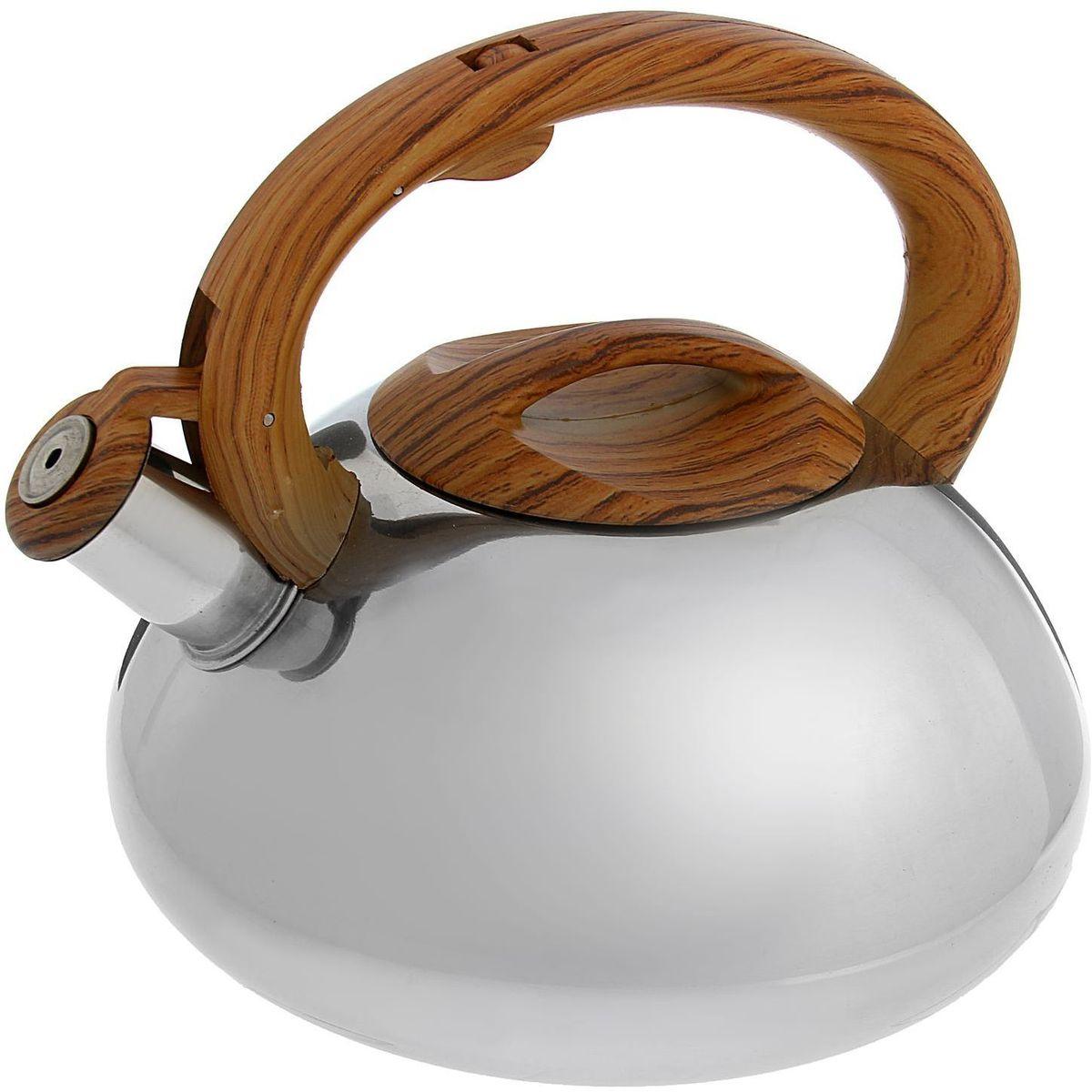 Чайник Доляна Квант, со свистком, цвет: коричневый, 2,8 л1405209Бытовая посуда из нержавеющей стали славится неприхотливостью в уходе и безукоризненной функциональностью. Коррозиестойкий сплав обеспечивает гигиеничность изделий. Чайники из этого материала абсолютно безопасны для здоровья человека. Чем привлекательна посуда из нержавейки? Чайник из нержавеющей стали станет удачной находкой для дома или ресторана: благодаря низкой теплопроводности модели вода дольше остается горячей; необычный дизайн радует глаз и поднимает настроение; качественное дно гарантирует быстрый нагрев. Как продлить срок службы? Ухаживать за новым приобретением элементарно просто, но стоит помнить о нескольких нехитрых правилах. Во-первых, не следует применять абразивные инструменты и сильнохлорированные моющие средства. Во-вторых, не оставляйте пустую посуду на плите. В-третьих, если вы уезжаете из дома на длительное время - выливайте воду из чайника. Если на внутренней поверхности изделия появились пятна, используйте для их удаления несколько капель уксусной или лимонной...