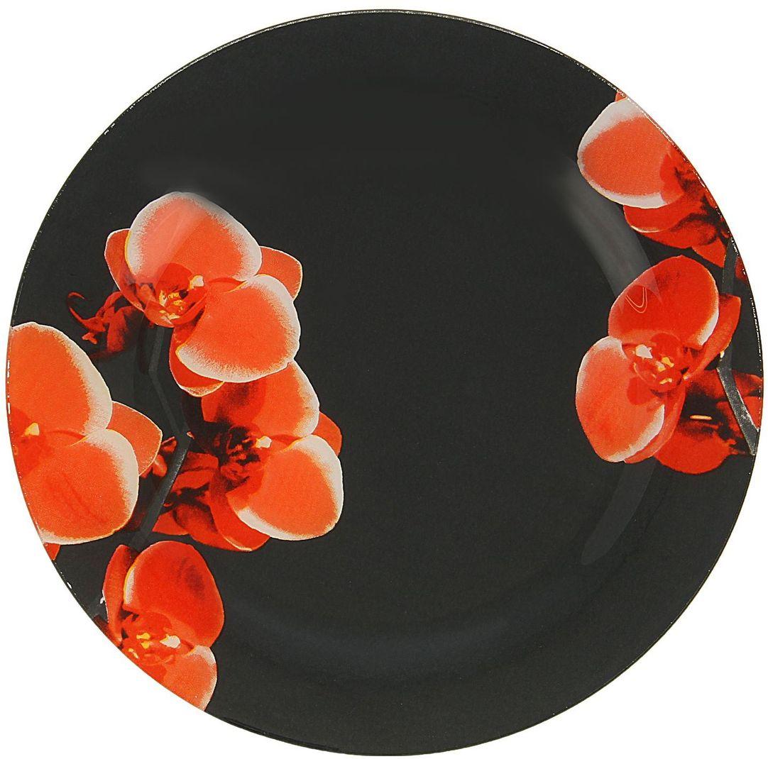 Тарелка Доляна Орхидеи на черном, диаметр 22 см1571474Столовая посуда с природными мотивами в оформлении разнообразит интерьер кухни и сделает застолье самобытным и запоминающимся. Достоинства: качественное стекло не впитывает запахов; гладкая поверхность обеспечивает лёгкость мытья. Рекомендуется избегать использования абразивных моющих средств. Делайте любимый дом уютнее!