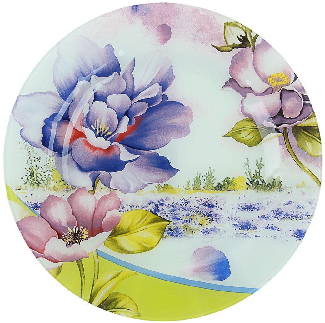 Тарелка Доляна Лиловый соблазн, диаметр 25 см230134Столовая посуда с природными мотивами в оформлении разнообразит интерьер кухни и сделает застолье самобытным и запоминающимся. Достоинства: качественное стекло не впитывает запахов; гладкая поверхность обеспечивает лёгкость мытья. Рекомендуется избегать использования абразивных моющих средств. Делайте любимый дом уютнее!