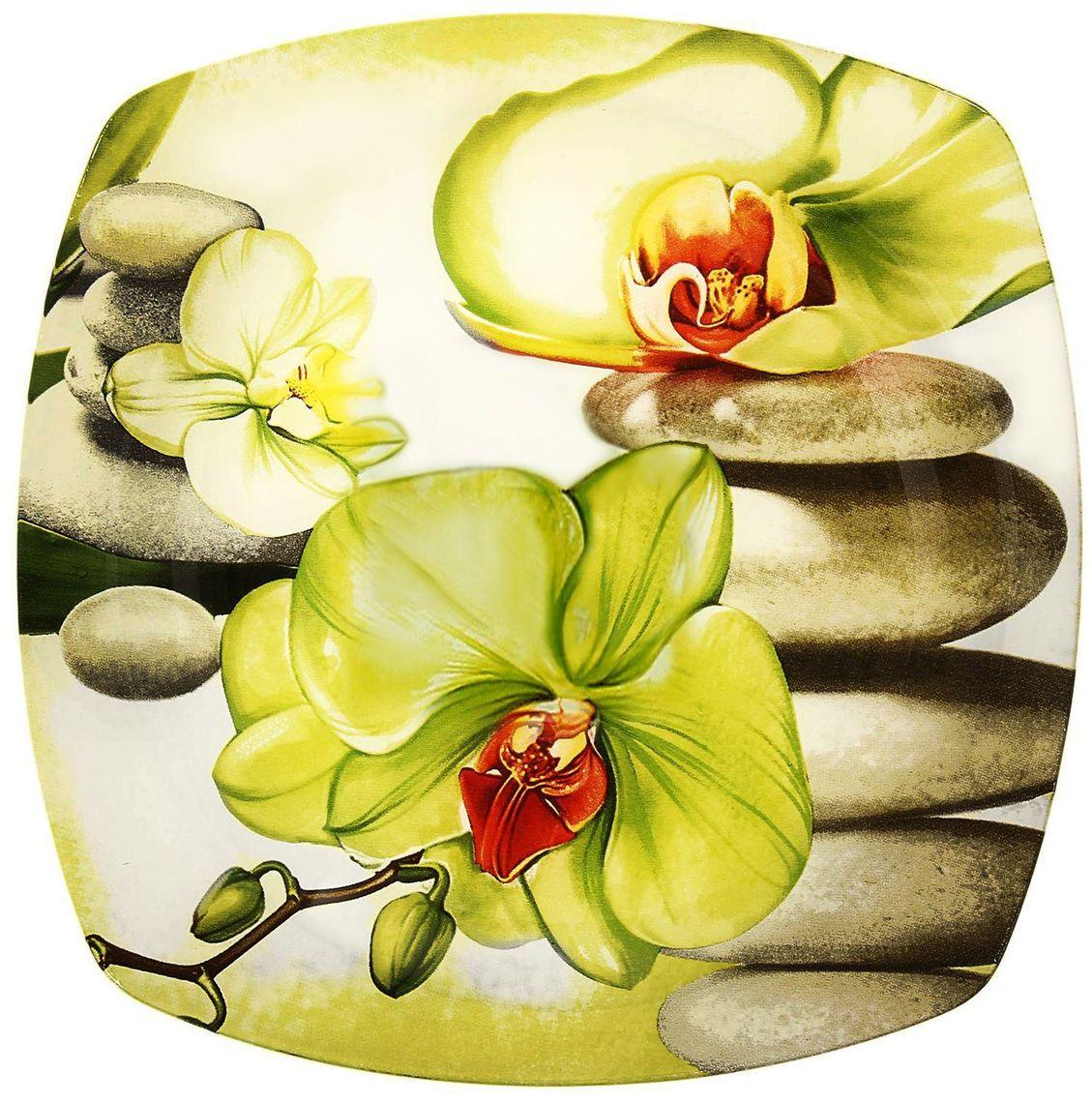 Тарелка Доляна Зеленая орхидея, диаметр 23 см230534Столовая посуда с природными мотивами в оформлении разнообразит интерьер кухни и сделает застолье самобытным и запоминающимся. Достоинства: качественное стекло не впитывает запахов; гладкая поверхность обеспечивает лёгкость мытья. Рекомендуется избегать использования абразивных моющих средств. Делайте любимый дом уютнее!