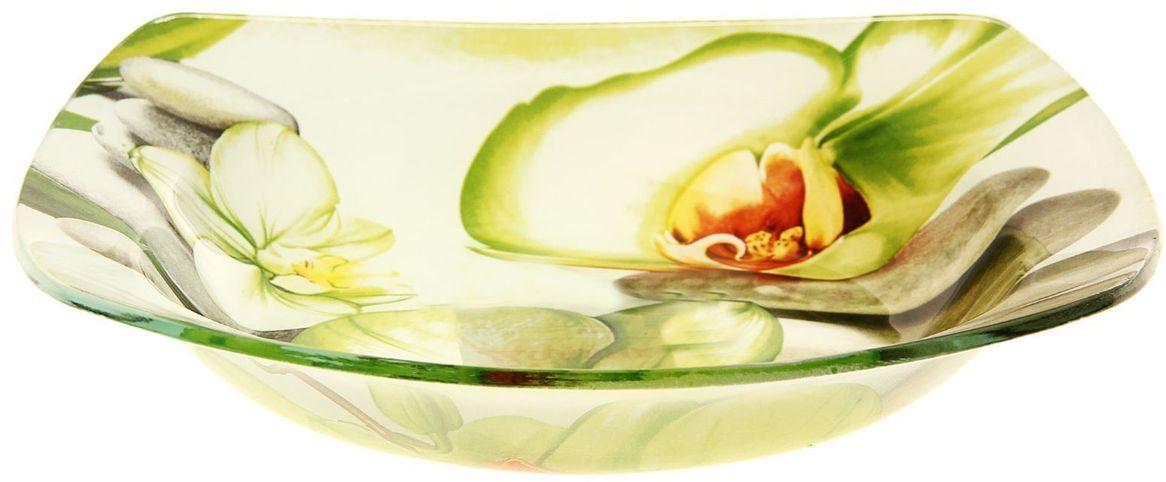 Тарелка глубокая Доляна Зеленая орхидея, диаметр 20 см230547Столовая посуда с природными мотивами в оформлении разнообразит интерьер кухни и сделает застолье самобытным и запоминающимся. Достоинства: качественное стекло не впитывает запахов; гладкая поверхность обеспечивает лёгкость мытья. Рекомендуется избегать использования абразивных моющих средств. Делайте любимый дом уютнее!