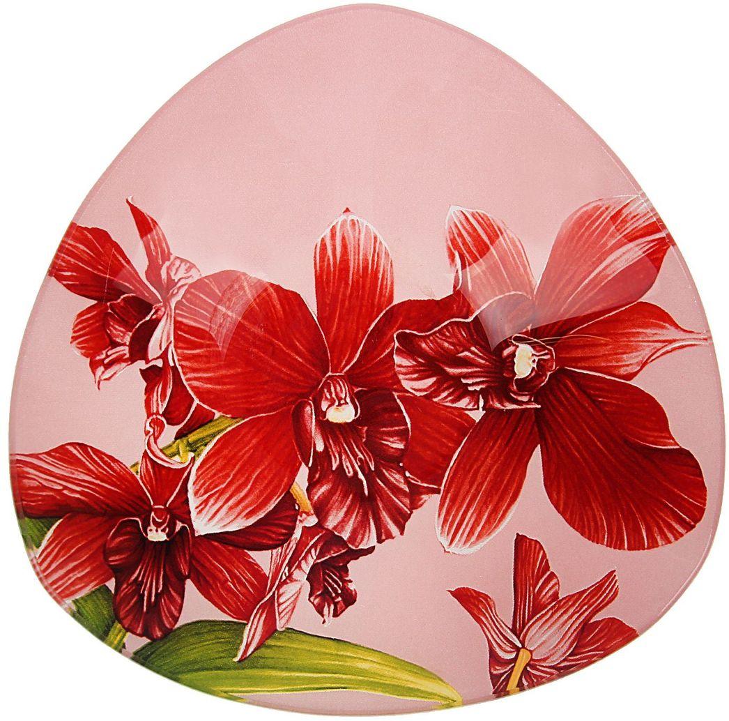 Тарелка глубокая Доляна Бордо, диаметр 20 см230655Столовая посуда с природными мотивами в оформлении разнообразит интерьер кухни и сделает застолье самобытным и запоминающимся. Достоинства: качественное стекло не впитывает запахов; гладкая поверхность обеспечивает лёгкость мытья. Рекомендуется избегать использования абразивных моющих средств. Делайте любимый дом уютнее!
