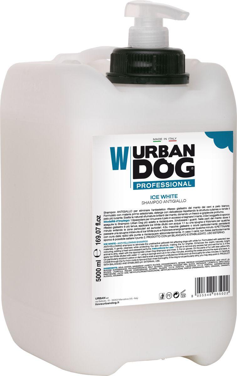 Шампунь для собак Urban Dog, Ice White, от пожелтения шерсти, 5 лUD202TIWШампунь ОТ ПОЖЕЛТЕНИЯ удаляет некрасивый желтоватый оттенок с шерстного покрова собак белого окраса. Применение: 1. Расчесать, чтобы удалить лишнюю шерсть, намочить шерсть. 2. Если животное грязное, вымыть его наиболее подходящим шампунем Urban Dog (Mini, Short, Long) и смыть. 3. Надеть перчатки. На участки шерсти, где эффект пожелтения менее выражен, нанести Ice White, разбавленный водой в соотношении 1:1, с помощью губки и массировать несколько минут, избегая области вокруг глаз и ушей. 4. На желтые или темные особо стойкие пятна нанести с помощью губки Ice White в неразбавленном виде и энергично массировать в течение нескольких минут. 5. Тщательно РАСЧЕСАТЬ от корней к концам и смыть большим количеством воды. Если собака не имеет особых загрязнений, пункт 2 можно пропустить. ДЛЯ НАРУЖНОГО ПРИМЕНЕНИЯ.