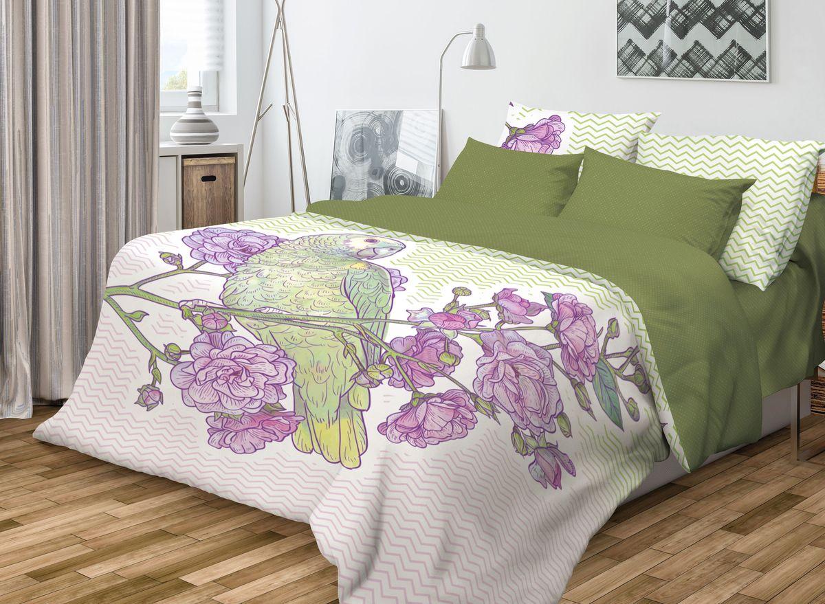 Комплект белья Волшебная ночь Parrot, 2-спальный, наволочки 70х70704332