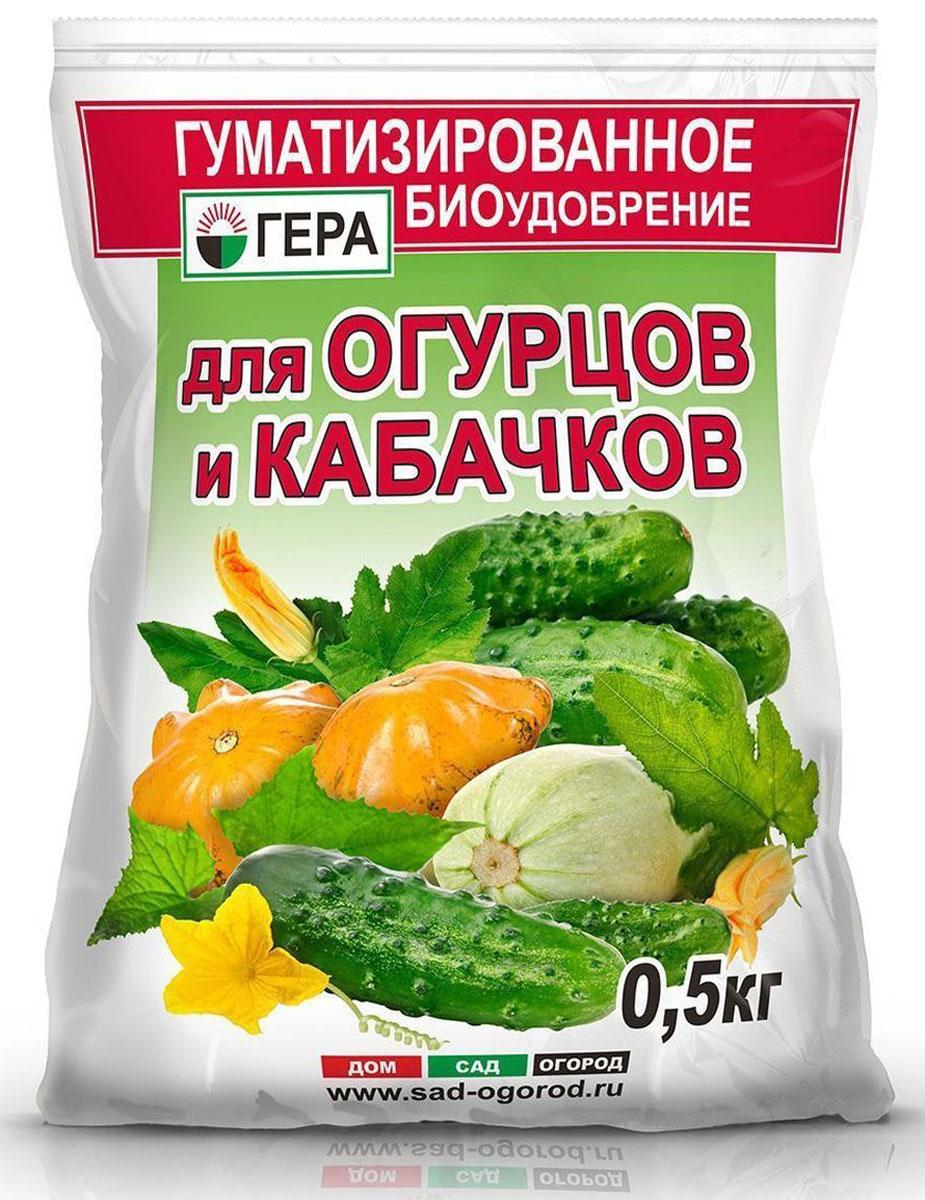 Удобрение Гера Для огурцов и кабачков, 0,5 кг5004Смешанное удобрение для основного внесения и подкормки огурцов, кабачков, патиссонов на всех видах почв . Не содержит хлора и нитратного азота. Содержит полный сбалансированный набор элементов питания, необходимых для нормального роста и развития растений. Стимулирует развитие плодов, улучшает вкусовые качества. Введение гумата увеличивает рост наземной и корневой части растений, повышает устойчивость растений к неблагоприятным воздействиям среды, болезням и вредителям, а также позволяет повысить эффективность усвоения минеральных компонентов удобрения за счет перевода их в более доступную для растений форму.