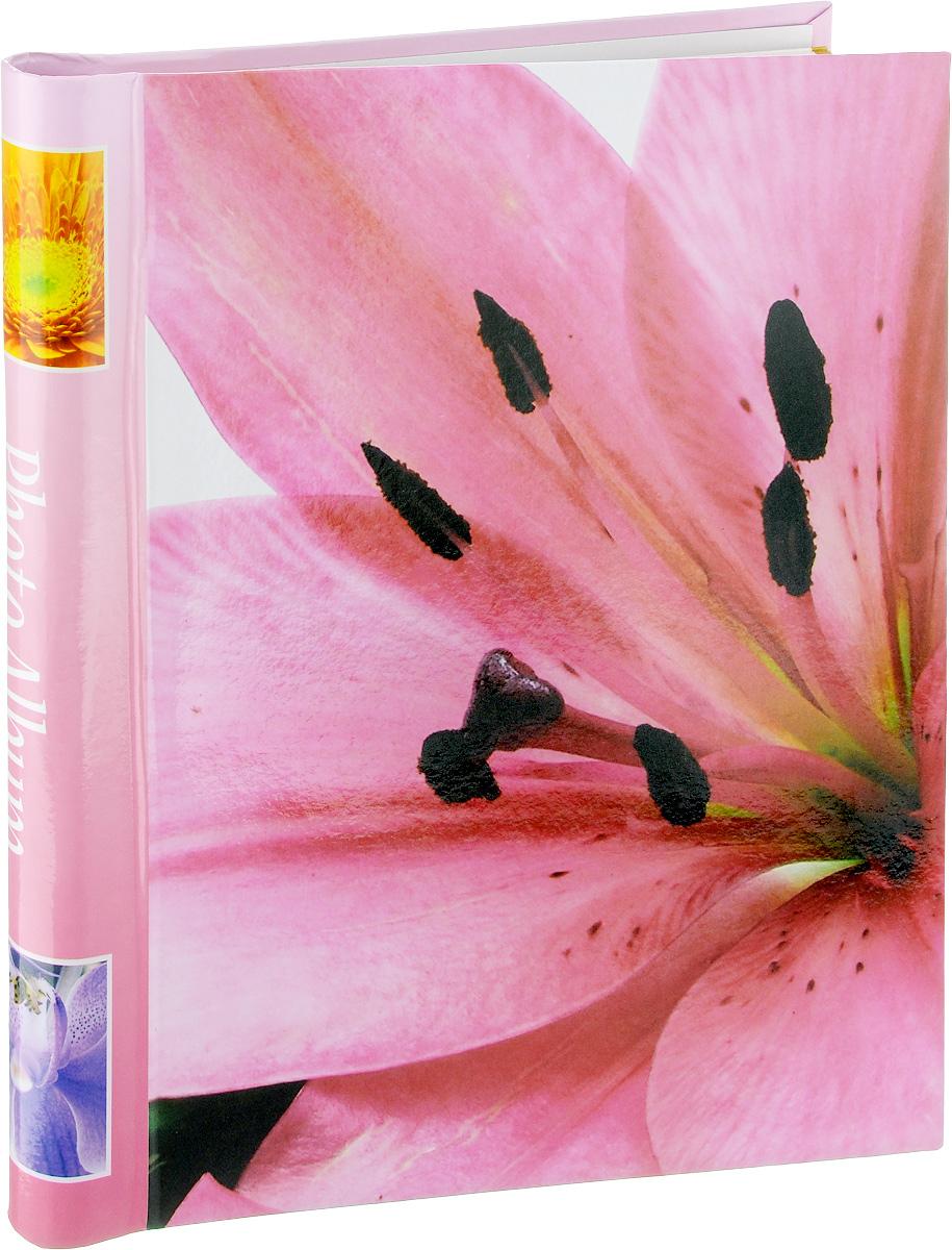 Фотоальбом Pioneer Fleur-De-Lis 3, 10 магнитных листов, цвет: розовый, 23 х 28 см46265 LM-SA10Фотоальбом Pioneer  Fleur-De-Lis 3 позволит вам запечатлеть незабываемые моменты вашей жизни, сохранить свои истории и воспоминания на его страницах. Обложка из толстого картона оформлена изображением цветка. Фотоальбом рассчитан на 10 фотографий форматом 23 х 28 см. Такой фотоальбом позволит легко заполнить страницы вашей истории, и с годами ничего не забудется. Тип обложки: Ламинированный картон. Тип листов: магнитные. Тип переплета: спираль. Кол-во листов: 10. Материалы, использованные в изготовлении альбома, обеспечивают высокое качество хранения ваших фотографий, поэтому фотографии не желтеют со временем.