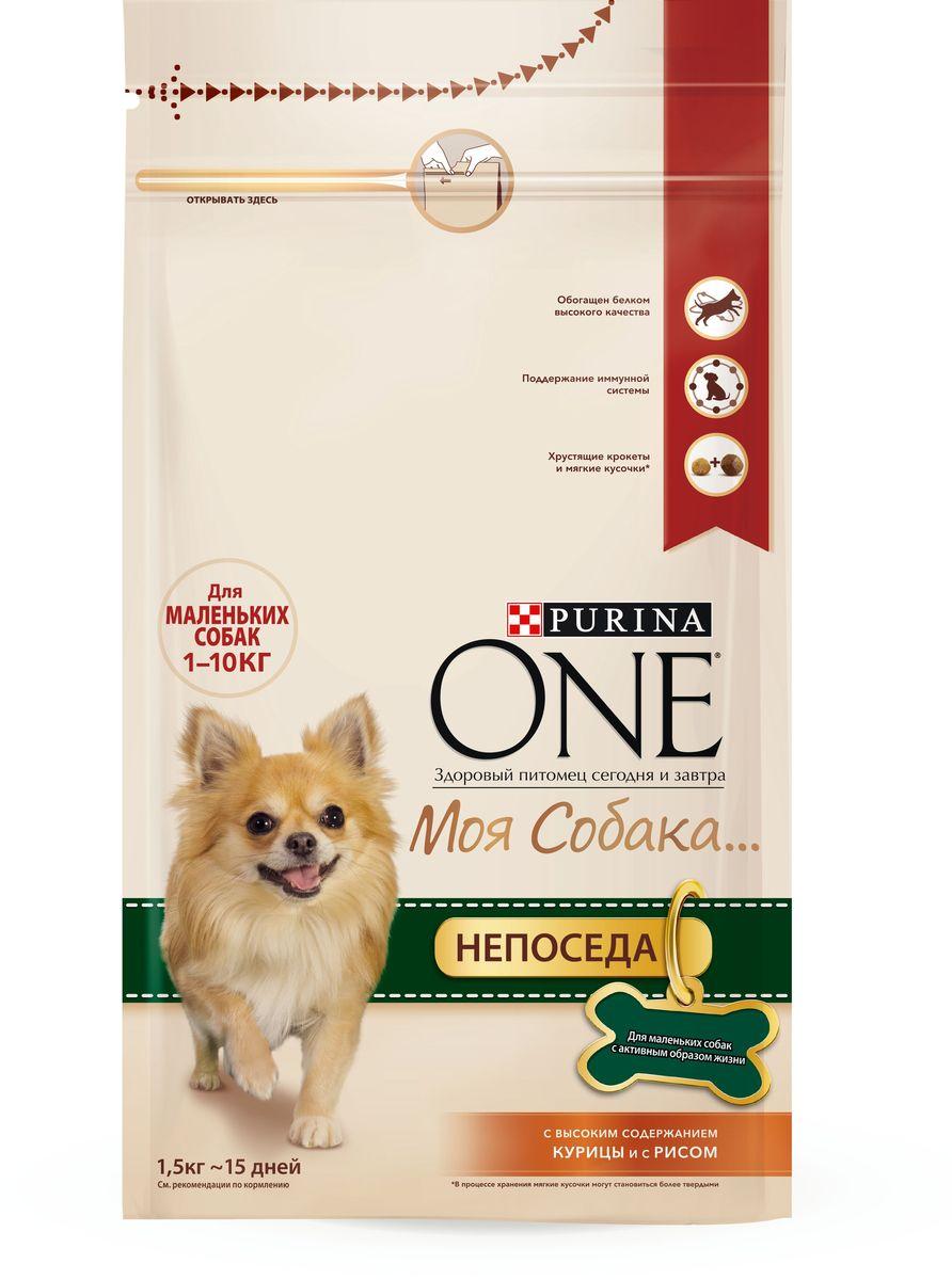 Корм сухой Purina One Моя Собака…Непоседа, с курицей и рисом, 1,5 кг57924Вкусное сочетание хрустящих крокетов и мягких кусочков с высоким содержанием курицы, отличается высоким уровнем протеинов, которые обеспечивают необходимый заряд энергии и поддержание крепкой иммунной системы. Начните кормить вашего любимца кормом PURINA ONE® Моя Собака...и оцените видимый результат улучшения его здоровья. МЕ/кг: витамин А: 30 000; витамин D3:1 000; витамин E: 600. Мг/кг: витамин С: 140; железо: 69; йод: 1,7; медь: 10; марганец: 32; цинк: 130; селен: 0,11. Белок: 28,0%, Жир: 18,0%, Сырая зола: 8,0%, Сырая клетчатка: 2,0%.