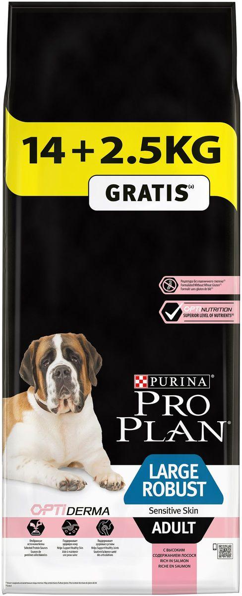 Корм сухой Pro Plan Adult Large Robust Sensitive для взрослых собак крупных пород с мощным телосложением, с комплексом Optihealth, с лососем, 16,5 кг63677Оптимальное питание является основой для здоровья и благополучия. Разработанный нашими ветеринарами и диетололгами корм Purina® PRO PLAN® с комплексом OPTIHEALTH® обеспечивает самое современное питание, которое оказывает долгосрочное влияние на здоровье собаки. Комплекс OPTIHEALTH® представляет сочетание специально отобранных питательных веществ для собак разных размеров и телосложения, который отвечает их особым потребностям и помогает сохранить отличное состояние. МЕ/кг:витамин A: 20 000; витамин D3: 650; витамин E: 550. Мг/кг: витамин C: 140; железо: 63; йод: 1,6; медь: 9,9; марганец: 30; цинк: 120; селен: 0,10. Белок: 26%, жир: 12%, сырая зола: 7,5%, сырая клетчатка: 2,5%.