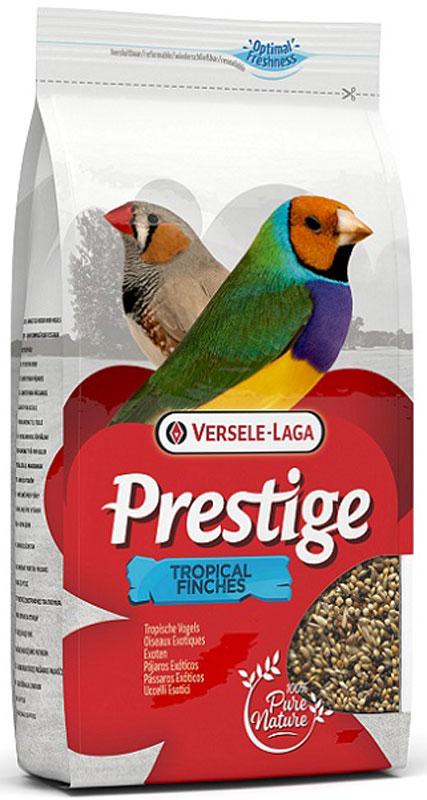 Корм для экзотических птиц Versele-Laga Tropical Finches, 1 кг421520Корм для экзотических птиц Versele-Laga Prestige Tropical Finches - это полноценная зерновая смесь для всех видов декоративных экзотических птиц. Смесь обогащена дополнительными питательными веществами, которые необходимы птицам для поддержания хорошей кондиции. Корм состоит из отборных семян и богат витаминами, аминокислотами и минералами. Суточная норма кормления: указана на упаковке. Птица должна иметь постоянный доступ к свежей чистой питьевой воде. Давайте корм только комнатной температуры. Корм следует хранить в сухом прохладном месте в упаковке производителя. Состав: желтое просо паникум (48%), желтое просо (33%), канареечное семя (8,5%), красное просо паникум (6%), красное просо (3%), масличный нуг (1,5%). Вес: 1 кг. Товар сертифицирован.