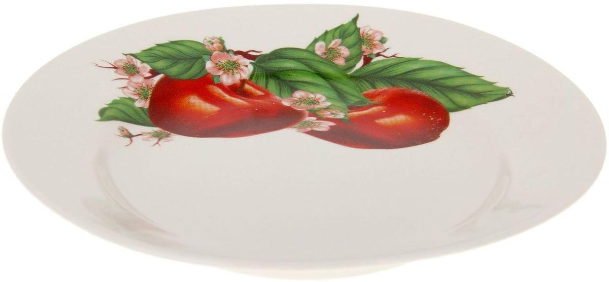 Тарелка Дружковский фарфор Корона. Яблоко, диаметр 17,5 см1185503Необходимый для любой хозяйки предмет, который сочетает в себе отличное качество и дизайн. Наша посуда станет преданным помощником на Вашей кухне.Покупать у нас просто – Вы заказываете понравившуюся продукцию, а мы доставляем Вам её в любое место!