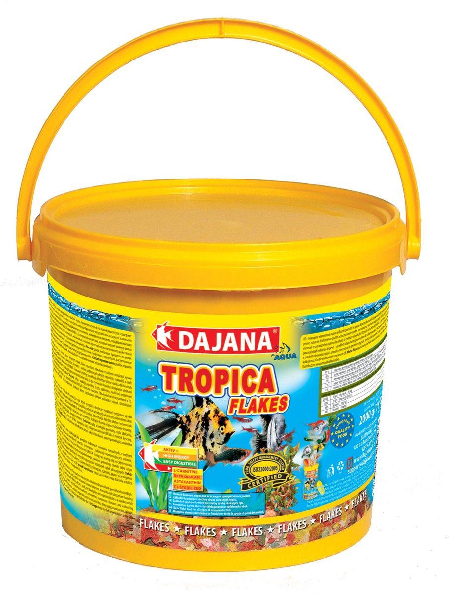 Корм для рыб Dajana Tropica Flakes, 10 лDP000GВысококачественный корм, состоящий из хлопьев на каждый день, для всех видов декоративных рыбок. Состоит из более 50-ти видов тщательно отобранных, натуральных исходных продуктов. Хлопья содержат мультивитаминный комплекс, стабилизированный витамин С, ценные минералы и микроэлементы. Питание этим кормом гарантирует здоровое развитие рыб, повышенную устойчивость к заболеваниям, активность, жизнерадостность и крепкий иммунитет.Благодаря натуральным продуктам, корм замечательно переваривается и усваивается в организме рыбок, не загрязняя воду в аквариуме.