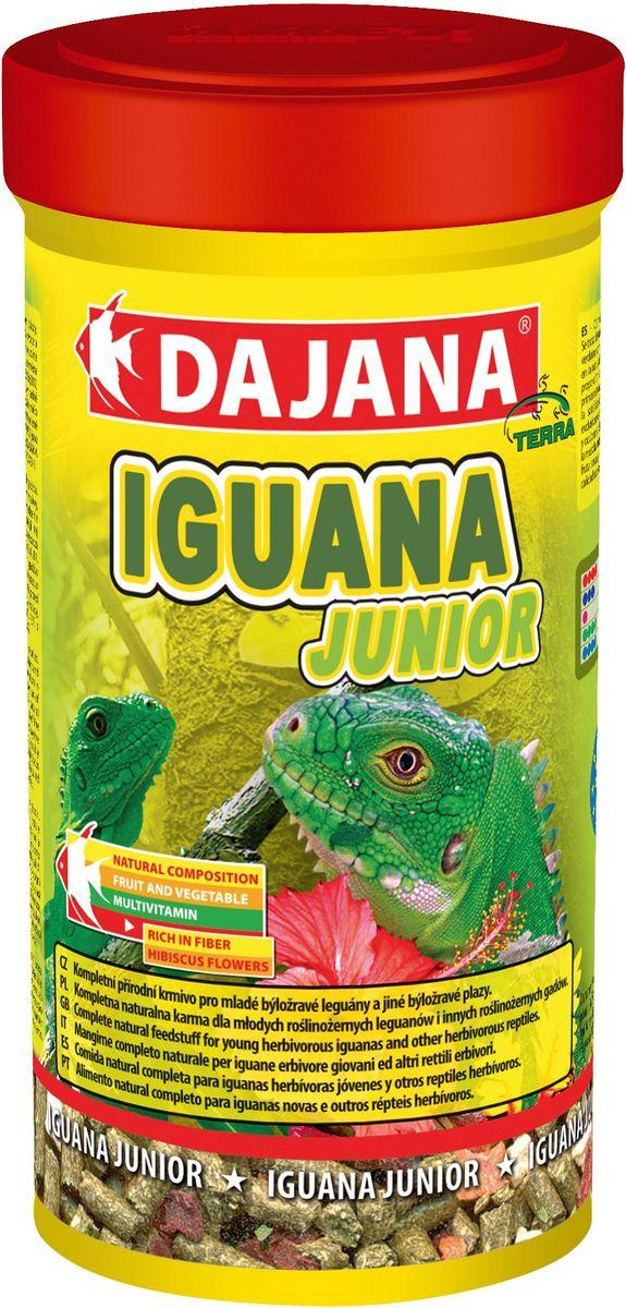 Корм для игуан Dajana Iguana Junior, 250 млDP250BНатуральный комплексный корм для молодых игуан. Корм представляет собой смесь высококачественного сушеного зеленого корма, отборных цветков алтея, крапивы, фруктов и овощей без каких-либо химических добавок.