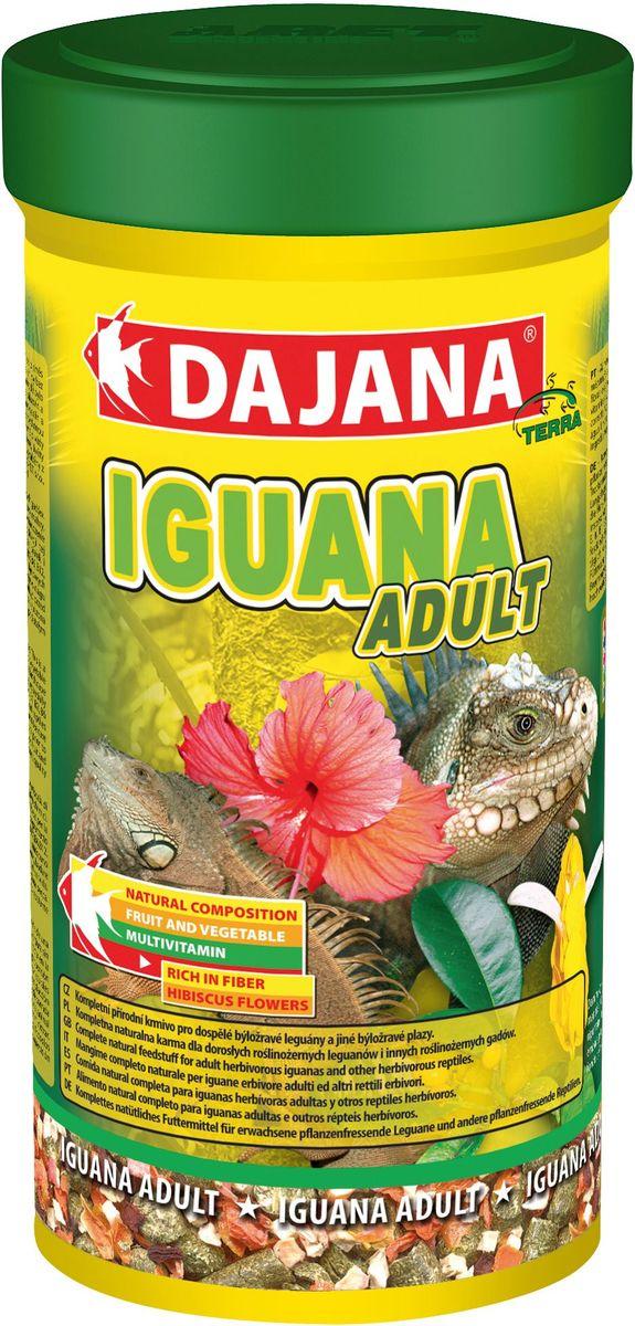 Корм для игуан Dajana Iguana Adult, 500 млDP251CНатуральный комплексный корм для молодых игуан. Корм представляет собой смесь высококачественного сушеного зеленого корма, отборных цветков алтея, крапивы, фруктов и овощей без каких-либо химических добавок.