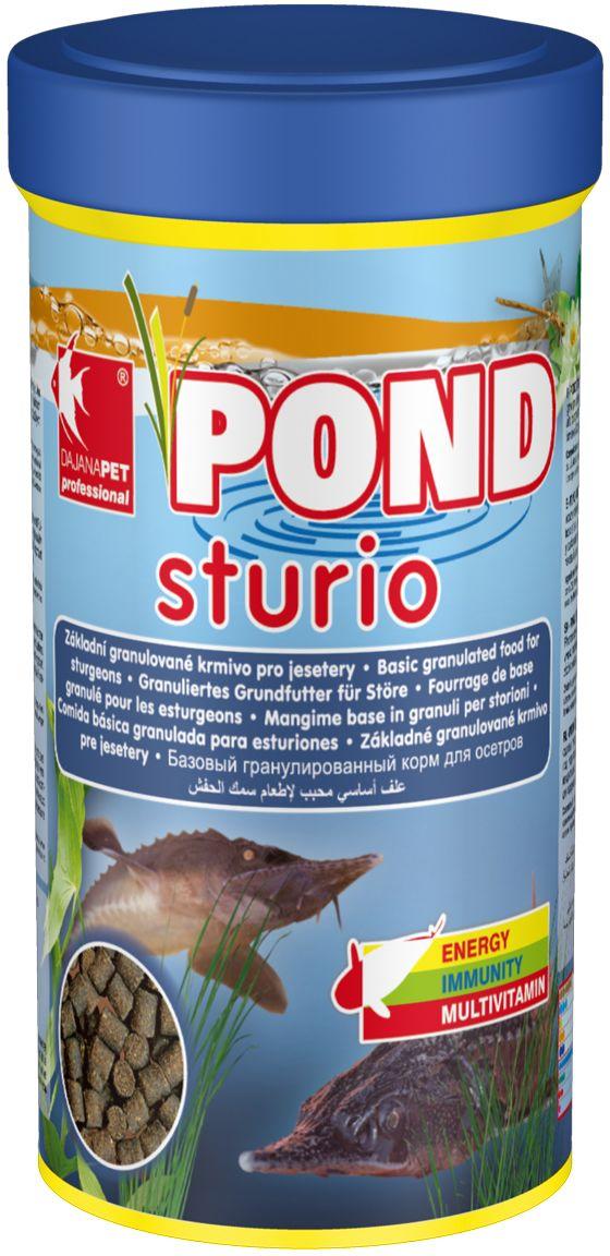 Корм для рыб прудовых Dajana Pond Studio, 1 л (600 г)DP310DКомплексный корм для стерляди и других видов рыб, обитающих на дне декоративных садовых прудов. Способствует здоровому пищеварению прудовых рыбок, повышает иммунитет, помогая избежать болезней внутренних органов. Подходит для кормления в течение любого сезона.