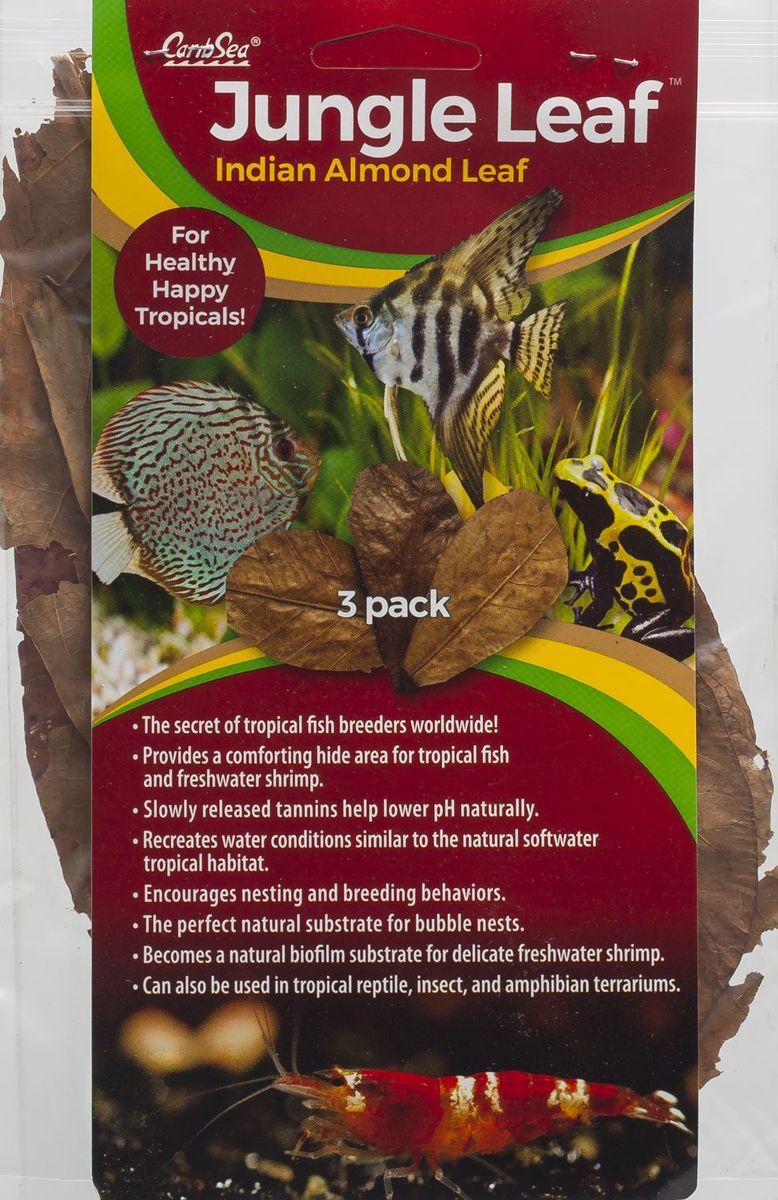 Листья индийского миндаля Caribsea Jungle Leaf, 3 шт00651Листья индийского миндального дерева являются отличными кондиционерами, устраняют раздражающее действие воды, воссоздают водные условия, аналогичные пресноводной тропической среде обитания, немного снижают рН, улучшают окраску рыб. Листья индийского миндального дерева незаменимы при разведении креветок, цихлид, лабиринтовых рыб. Идеальный естественный субстрат для пузырьковых гнёзд.