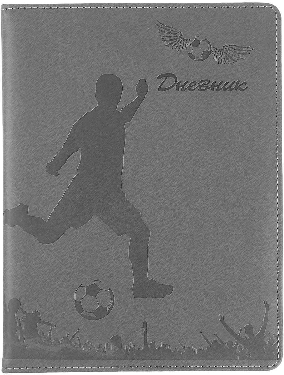 Дневник школьный Футбол для 5-11 классов цвет серый1030335