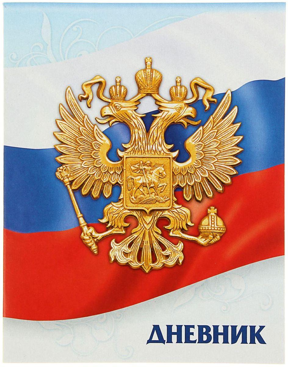 Calligrata Дневник школьный Госсимволика России-3