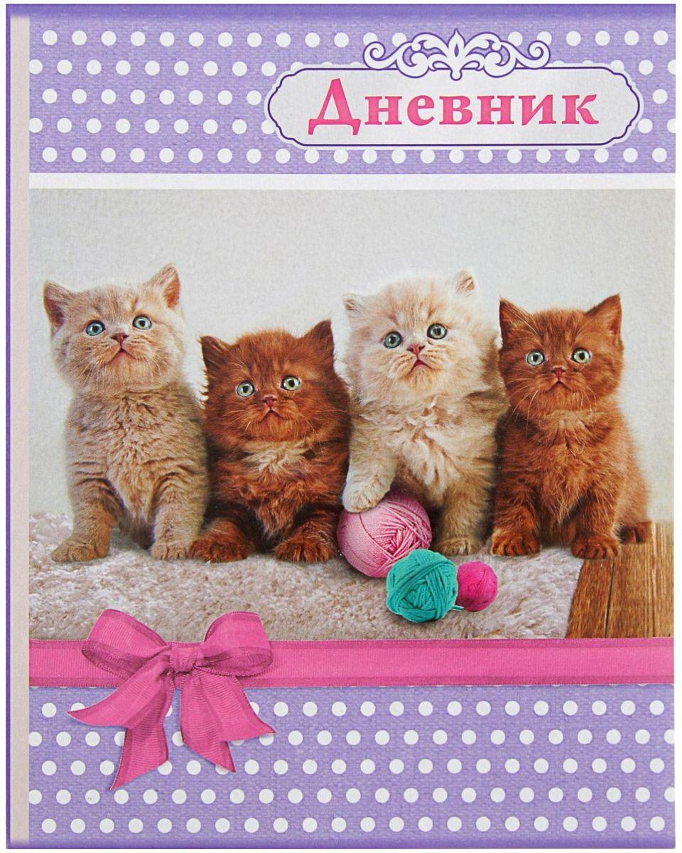 Calligrata Дневник школьный Кошки