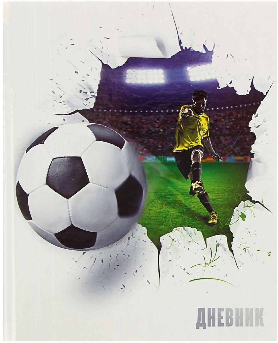 Calligrata Дневник школьный Футбольный мяч для 5-11 классов1319476