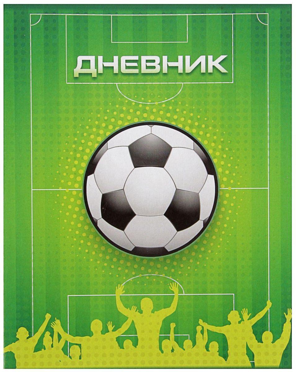 Calligrata Дневник школьный Футбол