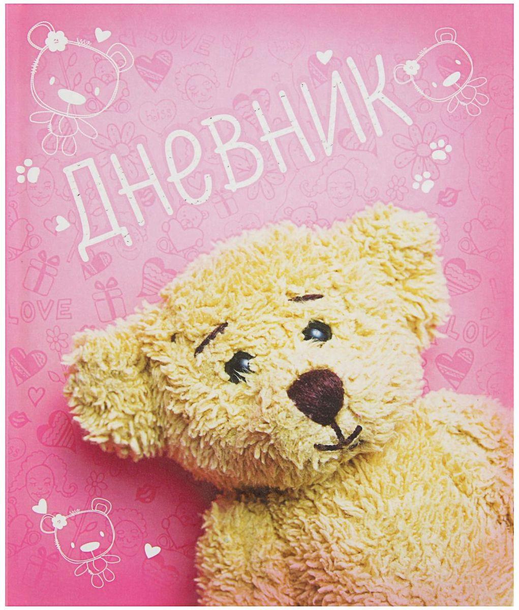 Calligrata Дневник школьный Мишутка для 1-4 классов2017290