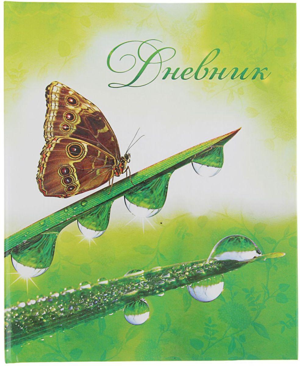 Calligrata Дневник школьный Утренняя роса для 5-11 классов2020770