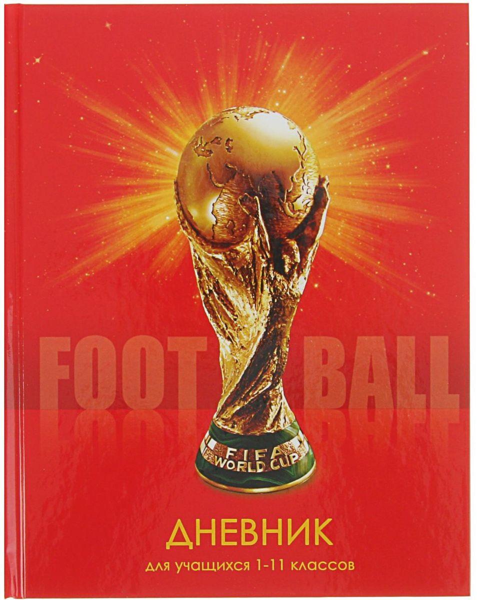 BG Дневник школьный Football2080340
