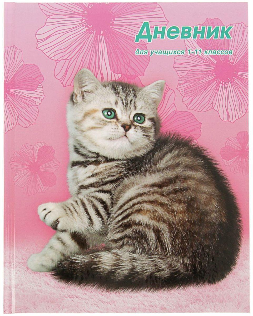 BG Дневник школьный Пушистый котенок2080345